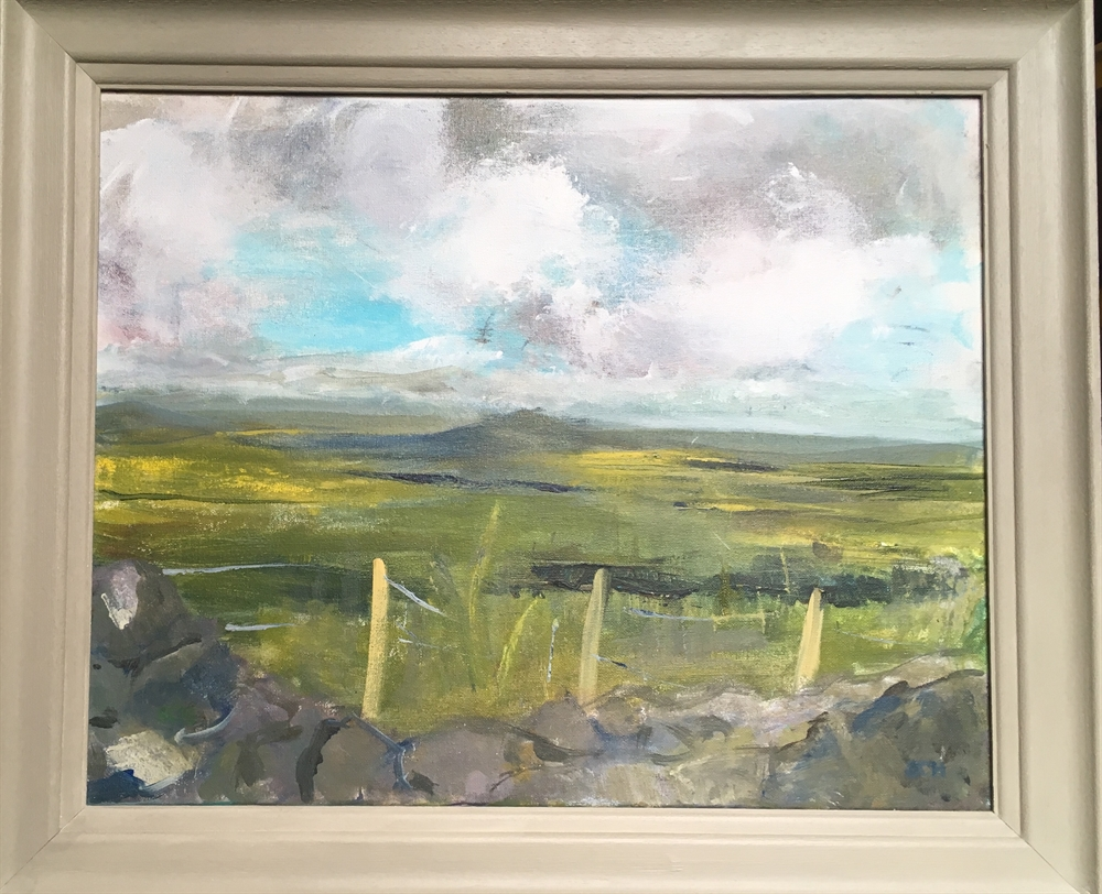 View from Rhiw Mountain - over the sheep fence  by Sarah Heelis (Nesbitt)
